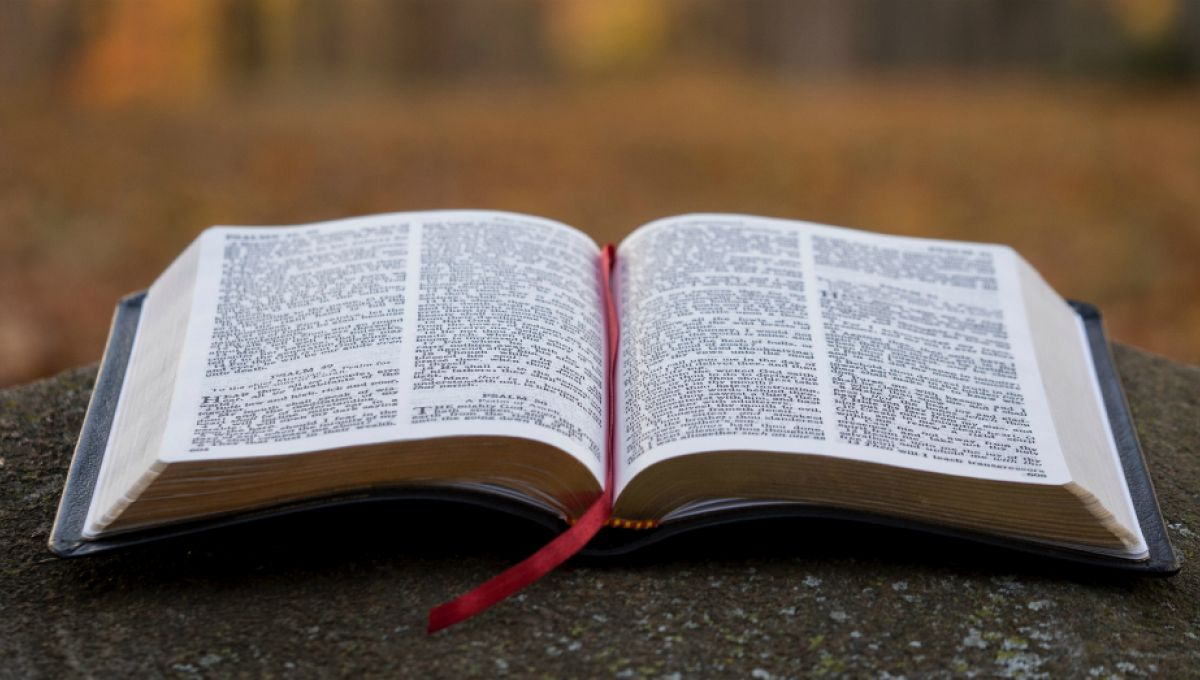 Call for Comments( The Gospel of Matthew)